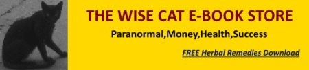 wisecat