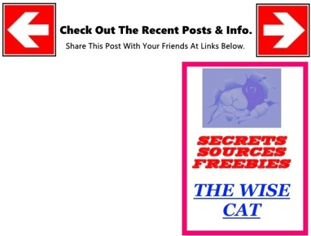WISECAT POINTER